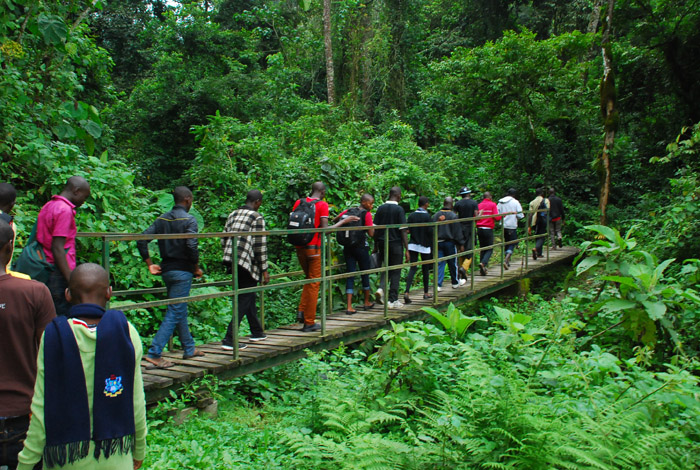 way-to-rwemzori-mountain